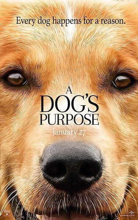 A Dog's Purpose watch on Netflix