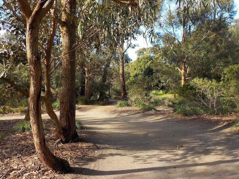 frankston gardens, george pentland botanic gardens, melbourne kids things to do, parks melbourne kids, best walking trails melbourne, bush walk victoria