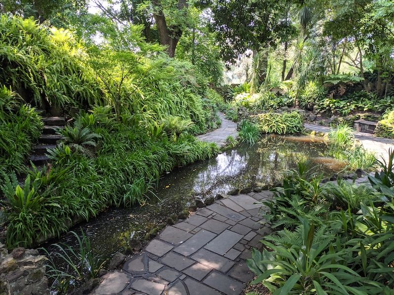 fern gully, botanical gardens melbourne activities for kids, things to see in melbourne, best melbourne parks, best melbourne gardens, rainforest victoria