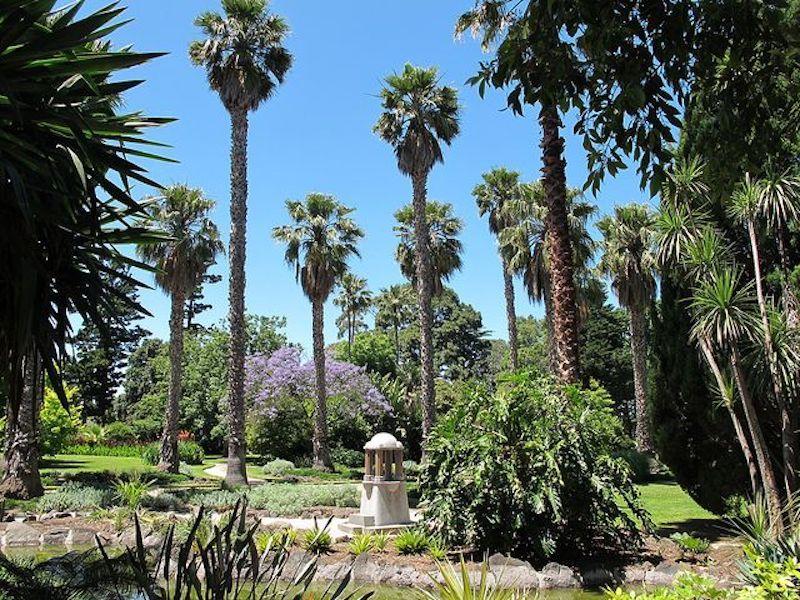 Williamstown Botanic Gardens, palm trees, melbourne beaches, melbourne kids activities, parks melbourne kids, best picnic spots melbourne