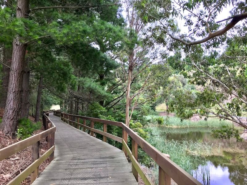 wilson botanic garden, to do with kids in melbourne, best botanic gardens melbourne, best walks melbourne