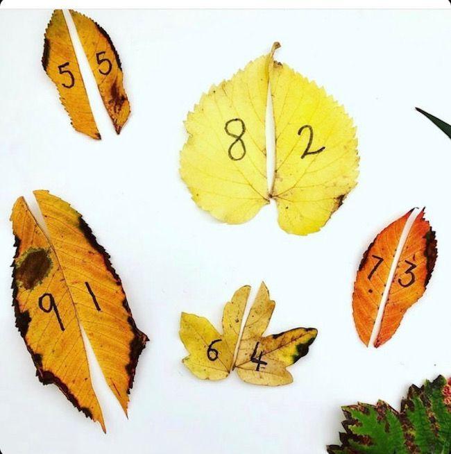 autumn kids crafts, easy kids crafts at home, kids outdoors, kids garden, australian kids activities